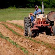 Očekuje se 700 novih traktora iz konkursa Svetske banke
