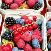 Rekordan izvoz jagodastog voća iz Srbije