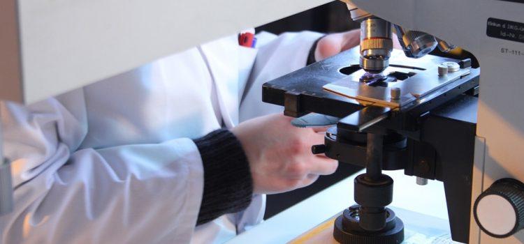 NA FRANKFURTSKOM AERODROMU DOSTUPAN TEST NA KORONU Brzo testiranje 139 evra, sporije 59 evra