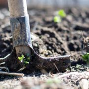 EU fondovi i izvori finansiranja koji su dostupni poljoprivrednicima u Srbiji