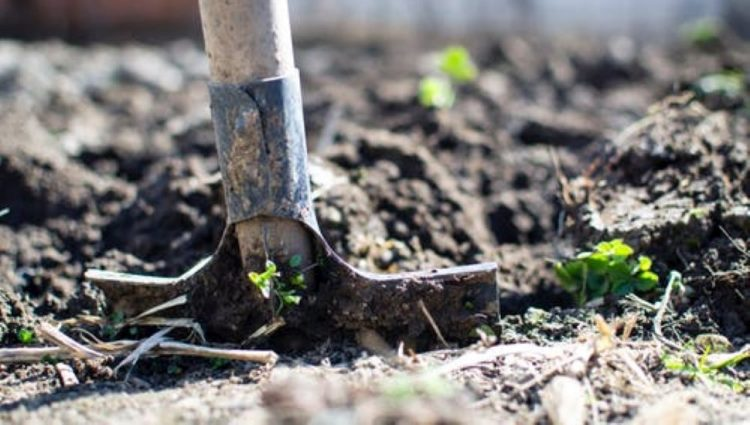 POMOĆ DRŽAVE SPAS ZA POVRTARE Vanredno stanje nanelo štetu poljoprivredi