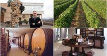 (FOTO) PRIZVODNJA VINA U SRBIJI DOŽIVELA RENESANSU Božidar Aleksandrović za Biznis.rs: Bez vinograda nema ni identiteta srpskih vina