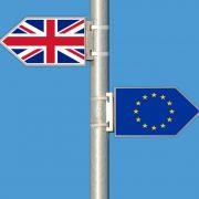 Izvoz mleka i kajmaka u EU pao za 96 odsto