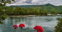 SVETSKI DAN ZAŠTITE ŽIVOTNE SREDINE U Srbiji zaštićeno 7,6 odsto teritorije
