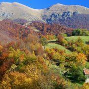 (FOTO) TURISTIČKE LEPOTE SRBIJE Stara planina, idealno mesto za aktivan odmor i uživanje u domaćim specijalitetima