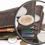 Minimalne zarade mera ekonomske snage