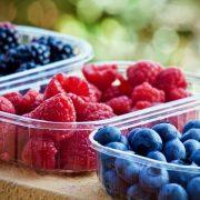 Organska poljoprivredna proizvodnja kao izvozna šansa