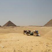 Egipat može da izgubi 72 odsto obradivog zemljišta zbog izgradnje brane