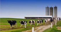 Put hrvatskih poljoprivrednika u EU nije bio lak