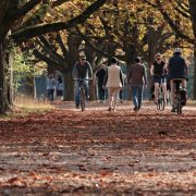 DA SVAKI DAN BUDE BEZ AUTOMOBILA Radojičić i Fabrici pozvali građane da više pešače i voze bicikle