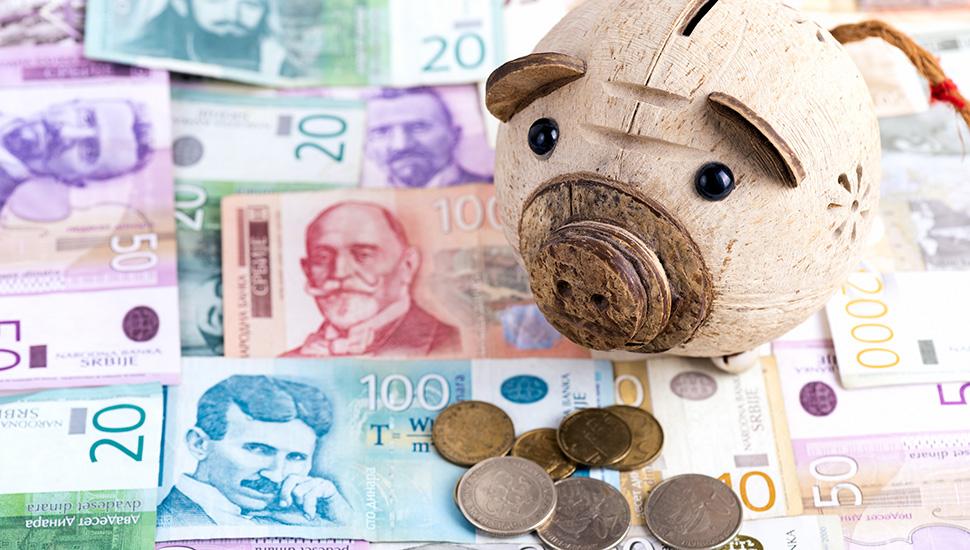 Kasica prasica i dinari
