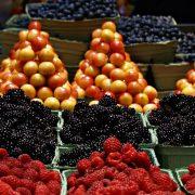 Dostupna elektronska edukativna platforma za izvoz hrane na tržište SAD