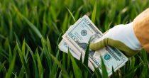 Razvojne banke su prošle godine dale 66 milijardi dolara za klimatske programe