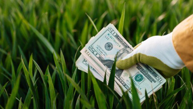 Proverite da li bi trebalo da platite eko taksu i koliko ona iznosi