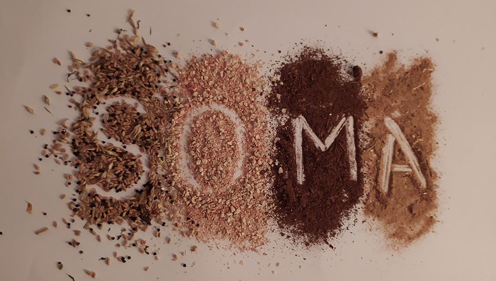 SOMA projekat - Biosporin zamena za stiropor