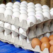 Zbog čega jaja iz Srbije ne mogu na tržište EU