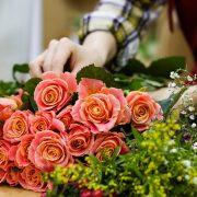 Uz mala ulaganja do velikog profita – gajenje cveća unosan biznis