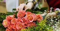 Uz mala ulaganja do velikog profita - gajenje cveća unosan biznis