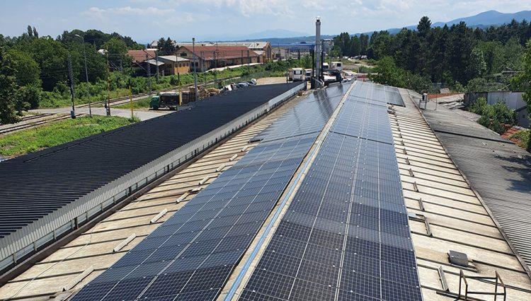 Kada bi gradili solarne panele brzinom kojom sečemo šume, posao bi bio gotov za tri godine