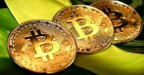 El Salvador prva zemlja u svetu u kojoj je bitcoin zakonsko sredstvo plaćanja