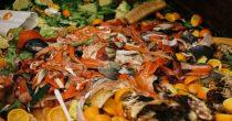 Srbiji nedostaje regulisani sistem operatera otpada od hrane, i edukacija