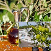 Po planiranim oznakama kvaliteta ispada da je Coca – cola zdravija od maslinovog ulja