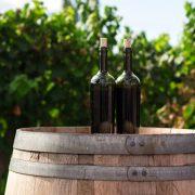 Ledeni talas poljuljao proizvodnju francuskog vina