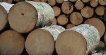 Vrednost drveta raste uprkos uticaju pandemije