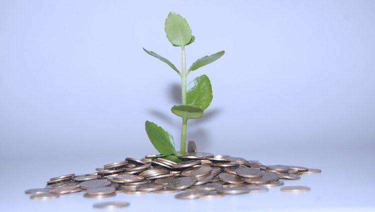 Za investiranje u preradu u Crnoj Gori izdvojeno 600.000 evra