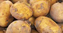 Velike promene i dodatni troškovi za proizvođače krompira