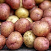 Smrznuti pomfrit i čips najznačajniji proizvodi od krompira u EU