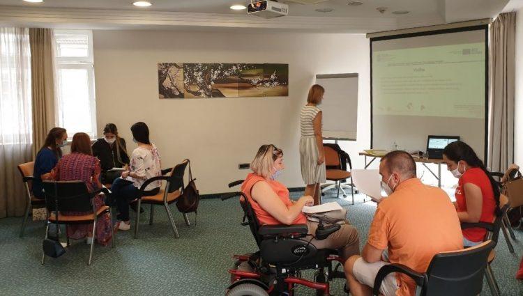 Posao na novoj online platformi traži 250 mladih osoba sa invaliditetom